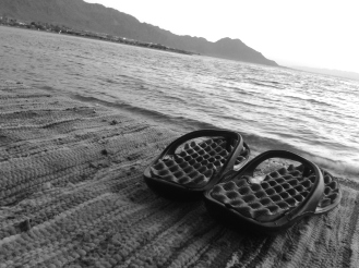 Marwa Zein Photography (13)